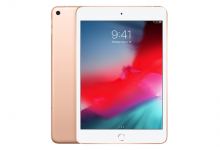 iPad mini (5.gen.) 256 GB WiFi+Cellular, Gold
